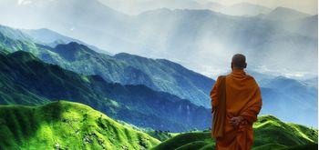 О тибетской медицине