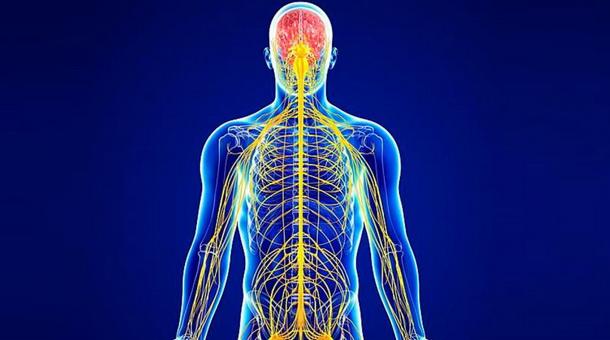 Программа Крепкие нервы